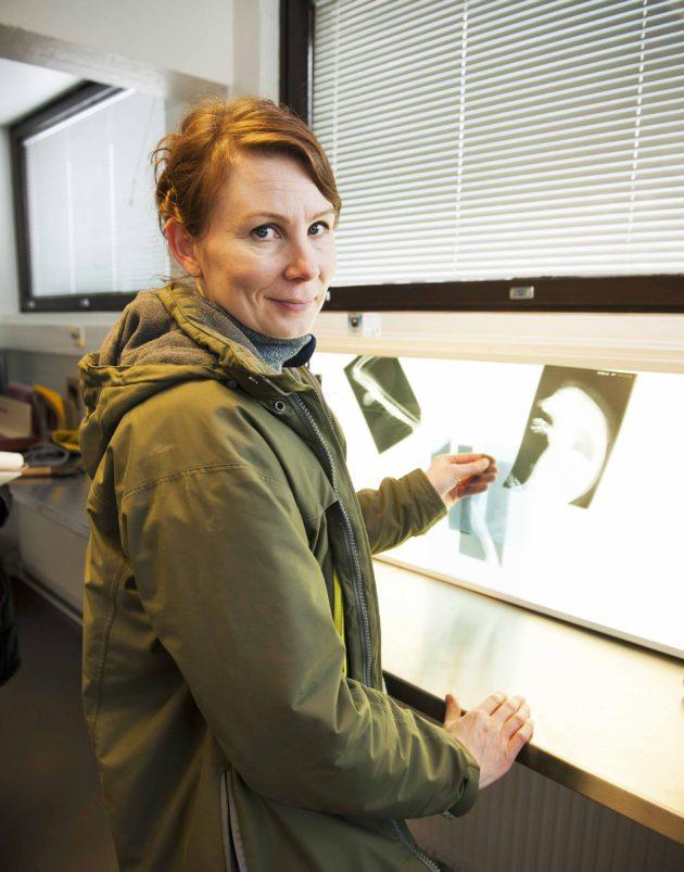 Villieläinlääkäri Sanna Sainmaa esittelee röntgenkuvia.