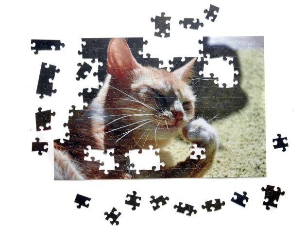 kissa-palapeli