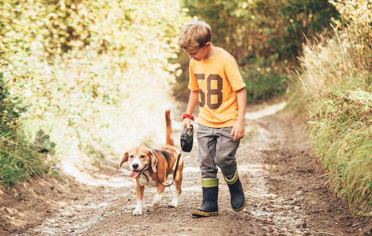 poika ulkoilee koiran kanssa
